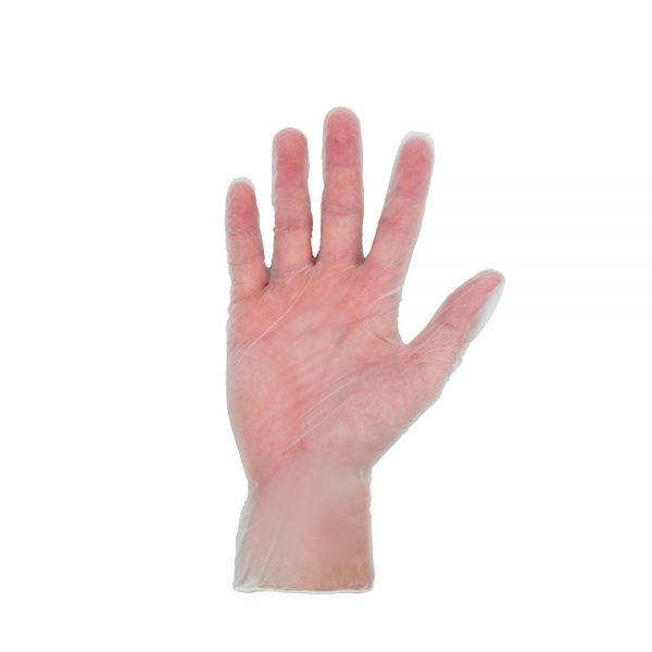 Asent-vinyl-gloves